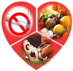 факторы риска развития атеросклероза сосудов сердца
